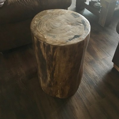 Solid wood Rustic Tree Stump